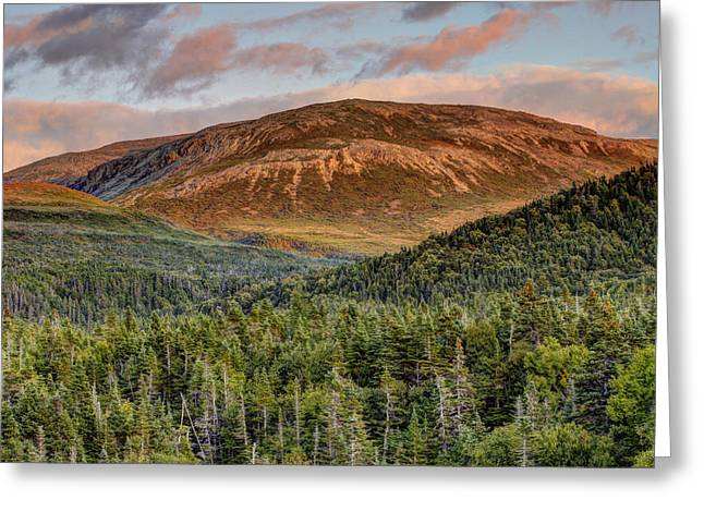 Ancient Boreal Mountain And Forest Greeting Card