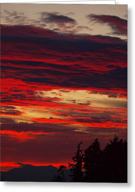 Tacoma Sunset 3 Greeting Card by Jim Moore