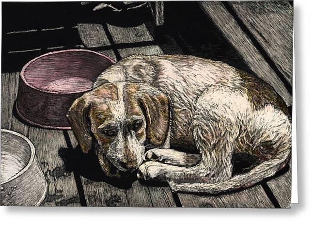 Taffy The Dog Greeting Card by Robert Goudreau