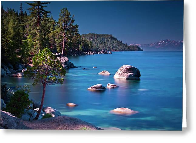 Tahoe On The Rocks Greeting Card by Donni Mac