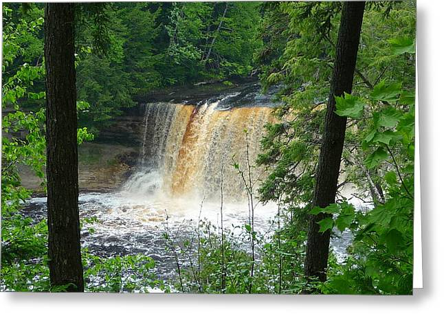 Tahquamenon Falls Of Michigan Greeting Card by Michael Carrothers