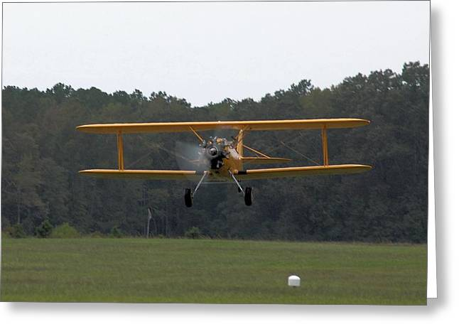 Taking Flight Greeting Card by