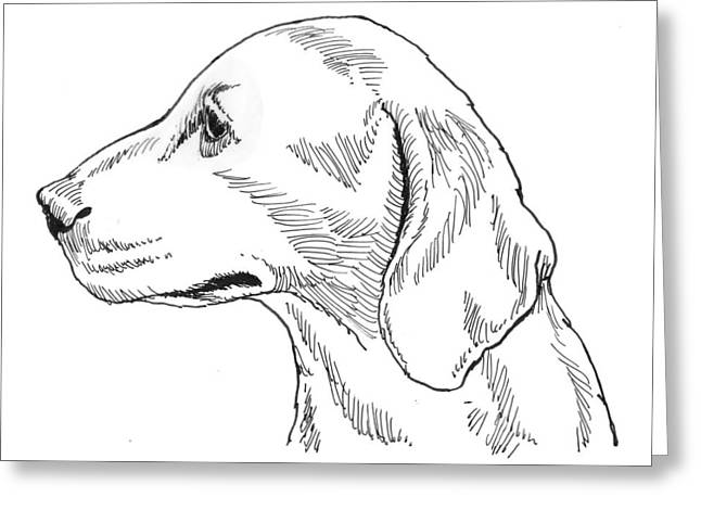 Talbot Hound Greeting Card