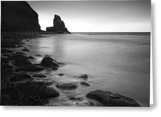 Talisker Rock Greeting Card by Nina Papiorek