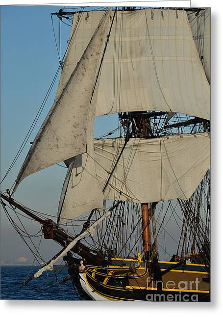 Tall Ship   Greeting Card by Timothy OLeary