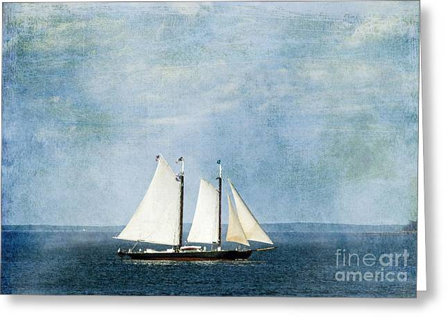 Greeting Card featuring the photograph Tall Ship by Alana Ranney