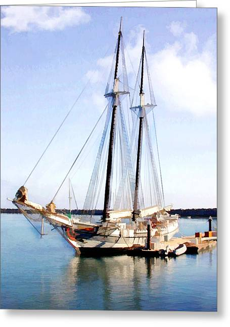 Tall Ship In Harbor Greeting Card by Elaine Plesser