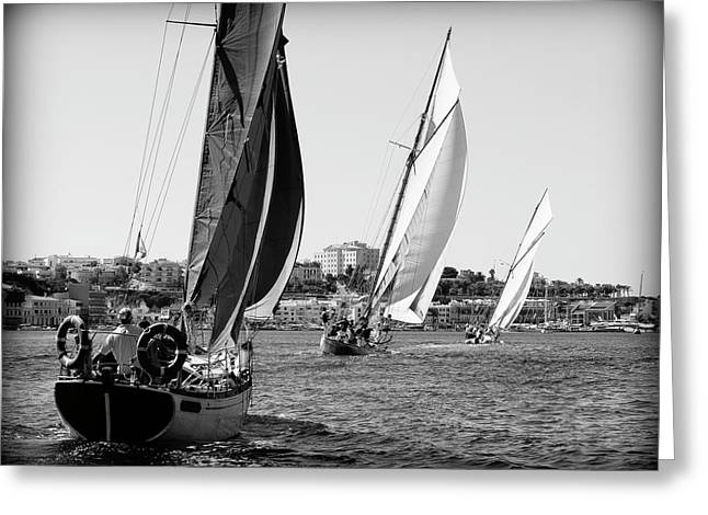 Greeting Card featuring the photograph Tall Ship Races 2 by Pedro Cardona