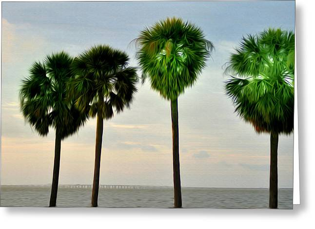 Tampa Bay Greeting Card by Bill Cannon