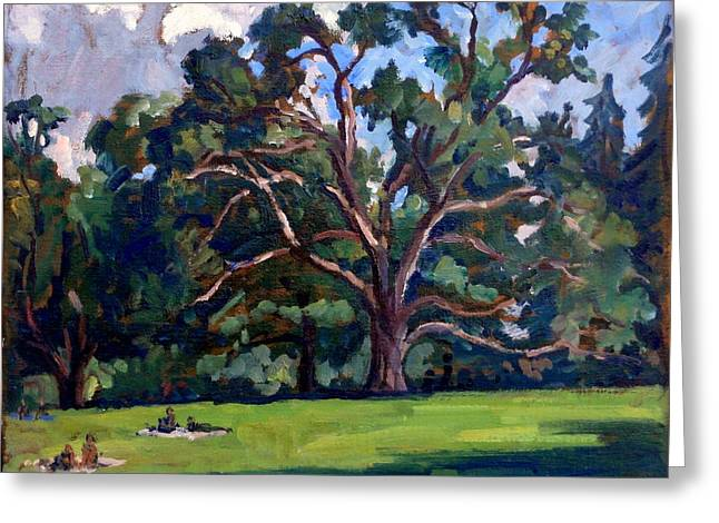 Tanglewood Saturday Greeting Card by Thor Wickstrom