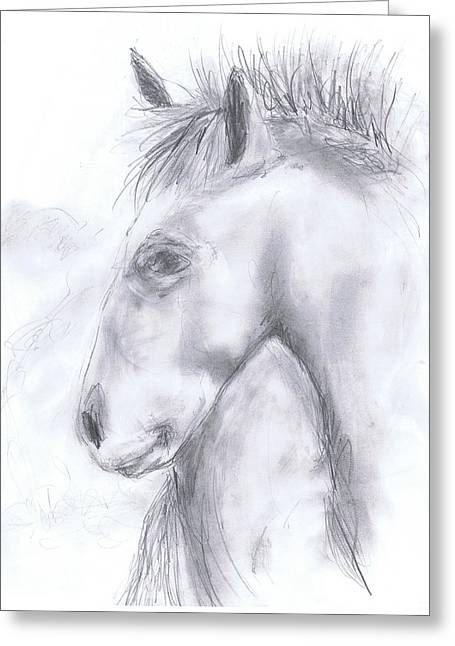 Taos Horse Greeting Card by Marilyn Barton