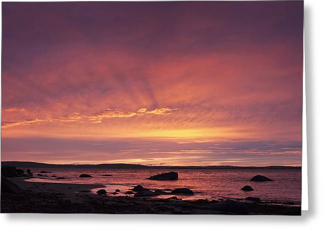 Greeting Card featuring the photograph Taroona Sunrise by Odille Esmonde-Morgan