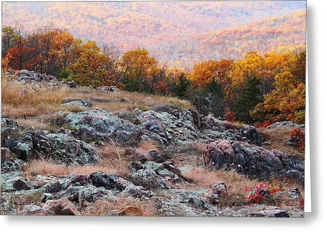 Taum Sauk Mountain Glade I Greeting Card by Greg Matchick