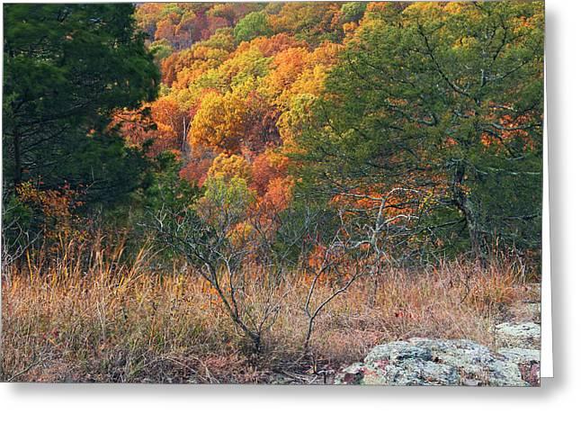 Taum Sauk Mountain Glade IIi Greeting Card by Greg Matchick
