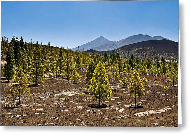 Technicolor Teide Greeting Card by Justin Albrecht