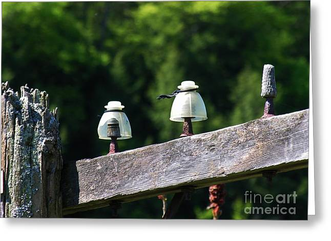 Greeting Card featuring the photograph Telephone Pole And Insulators by Sherman Perry