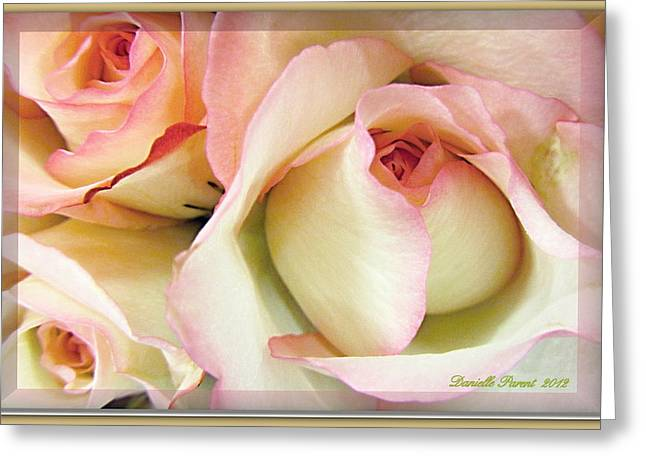 Tenderdly  Rose Greeting Card