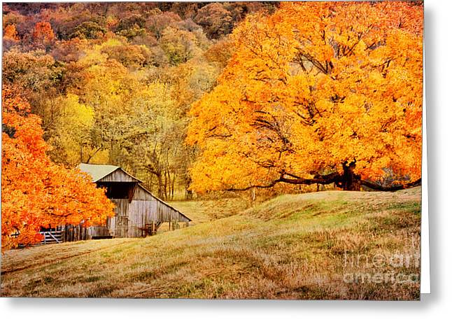 Tennessee Autumn Barn Greeting Card by Cheryl Davis