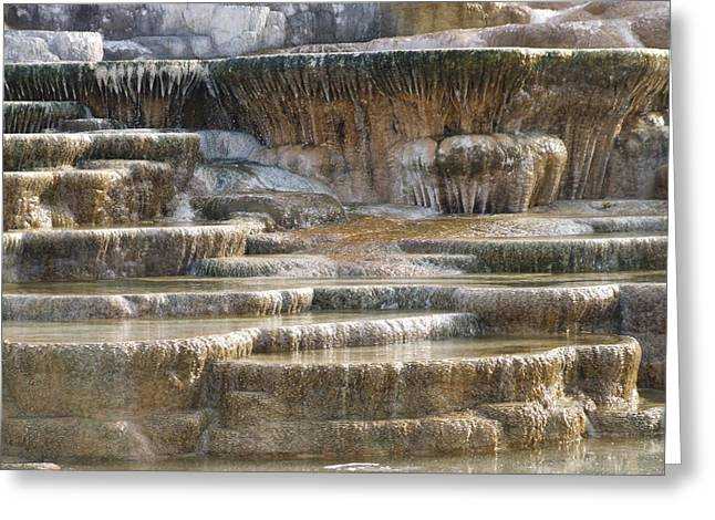 Terraces At Mammoth Hot Springs Greeting Card
