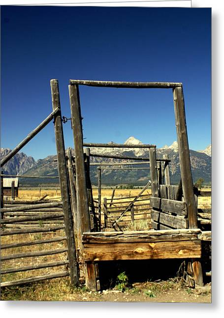 Greeting Card featuring the photograph Teton Ranch by Marty Koch