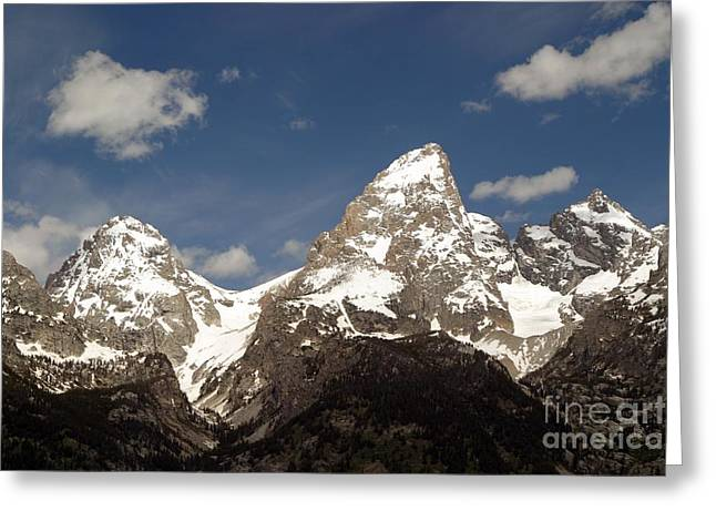 Teton Tips Greeting Card by Living Color Photography Lorraine Lynch