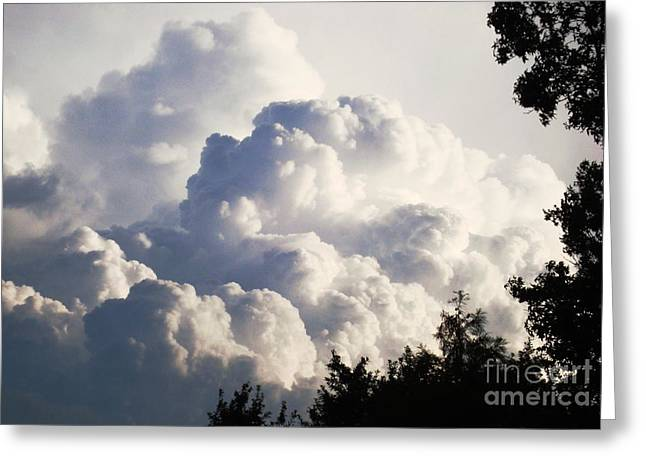 Texas Afternoon Sky Greeting Card by Denise Hopkins