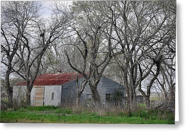 Texas Barn Greeting Card by Teresa Blanton