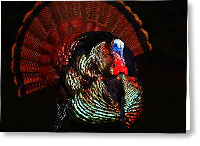 Thanksgiving Turkey - Painterly - Square Greeting Card by Wingsdomain Art and Photography