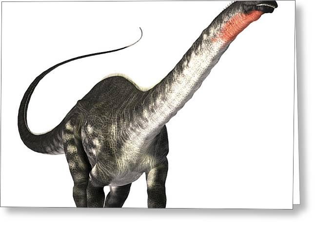 The Apatosaurus Dinosaur Greeting Card