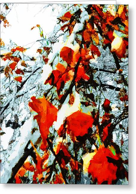 Greeting Card featuring the photograph The Autumn Leaves And Winter Snow by Steve Taylor