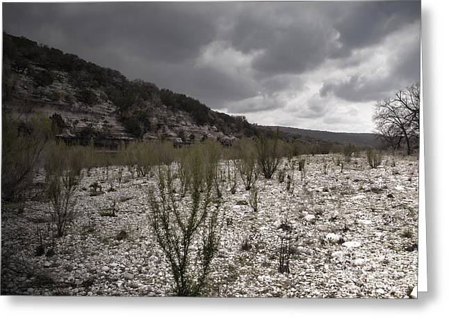 The Bank Of The Nueces River Greeting Card