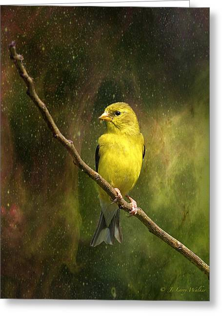 The Beauty Of Youth Greeting Card by J Larry Walker