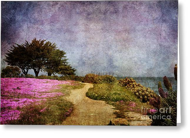 The Beckoning Path Greeting Card