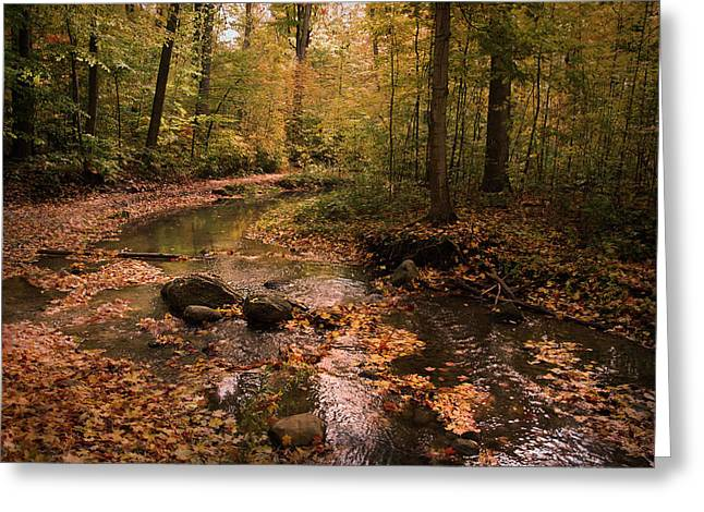 The Brook In The Woods Greeting Card