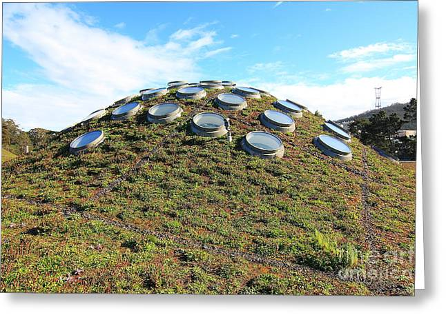 The California Academy Of Sciences In San Francisco . 40d4272 Greeting Card