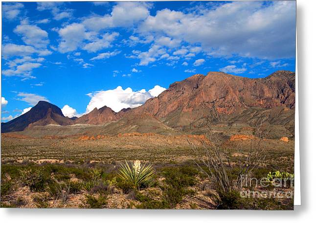 The Chisos Mountains Big Bend Texas Greeting Card by Gregory G Dimijian MD