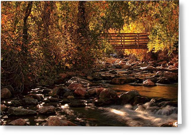 The Color Of Autumn Greeting Card by Gene Praag