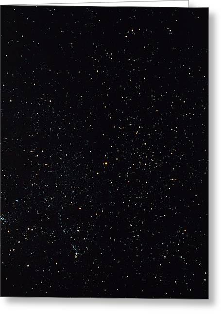 The Constellation Of Scorpius, The Scorpion Greeting Card by John Sanford