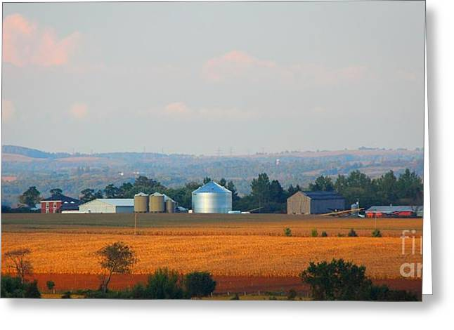 Greeting Card featuring the photograph The Countryside by Davandra Cribbie