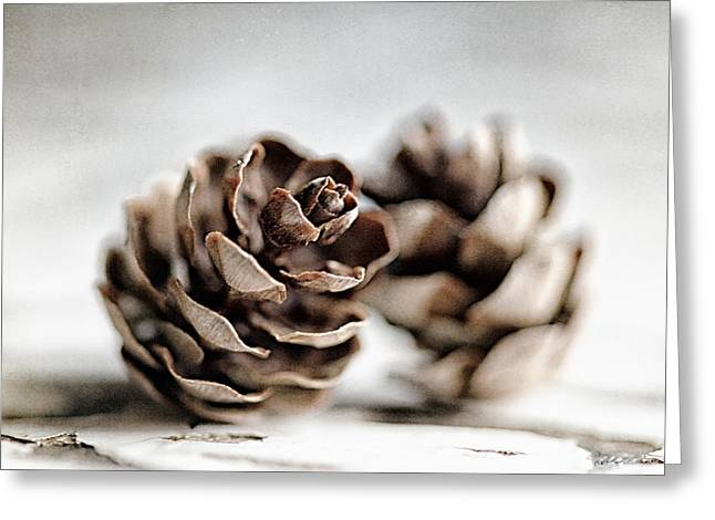 The Dance Of The Pinecones Greeting Card by Lisa Russo