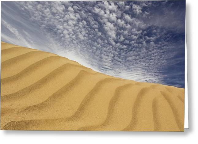 The Dunes Greeting Card by Mike McGlothlen