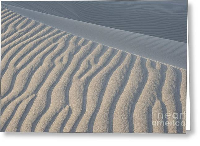 The Edge Of Sand Greeting Card by Ron Hoggard