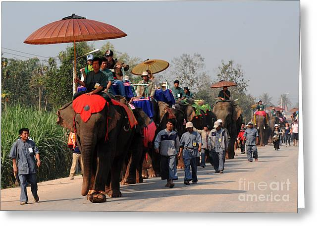 Greeting Card featuring the photograph The Elephant Parade by Vivian Christopher