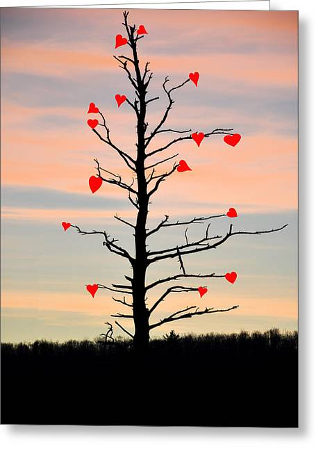 The Fall Of Love Greeting Card by Bill Cannon