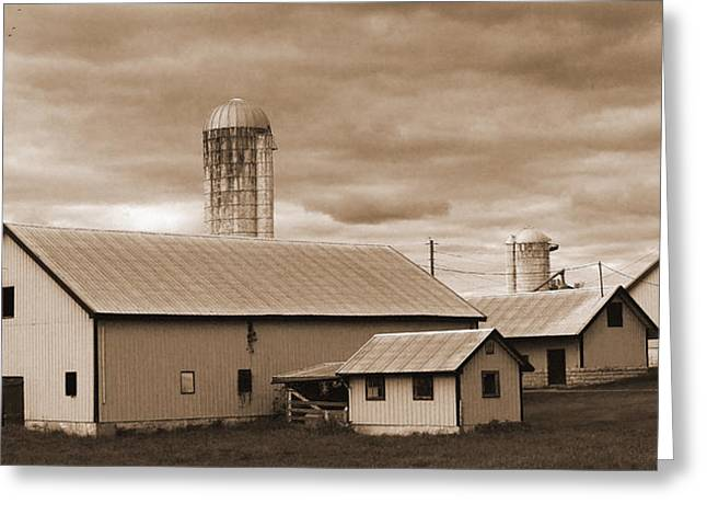 The Farm Greeting Card by Barry Jones