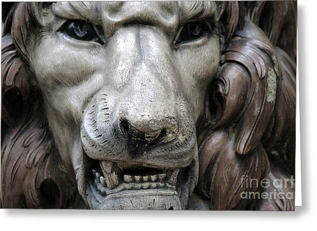 Greeting Card featuring the photograph The Fierce Lion  by Kathy  White