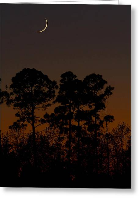 Greeting Card featuring the photograph The Fingernail Moon by Dan Wells
