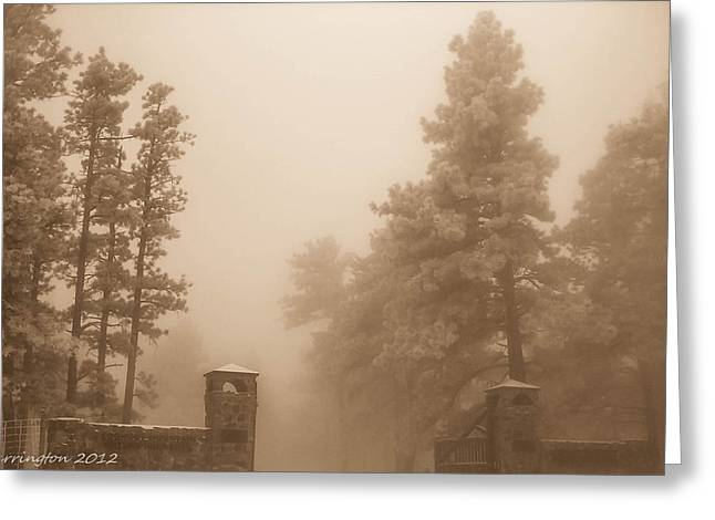 Greeting Card featuring the photograph The Fog by Shannon Harrington