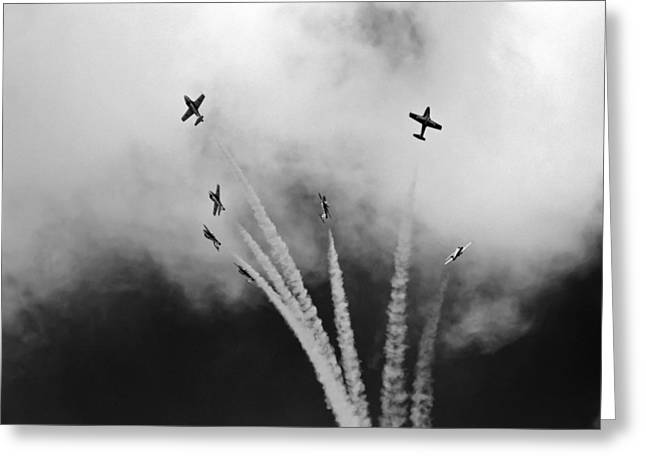 Greeting Card featuring the photograph The Freedom Of The Sky by Nick Mares