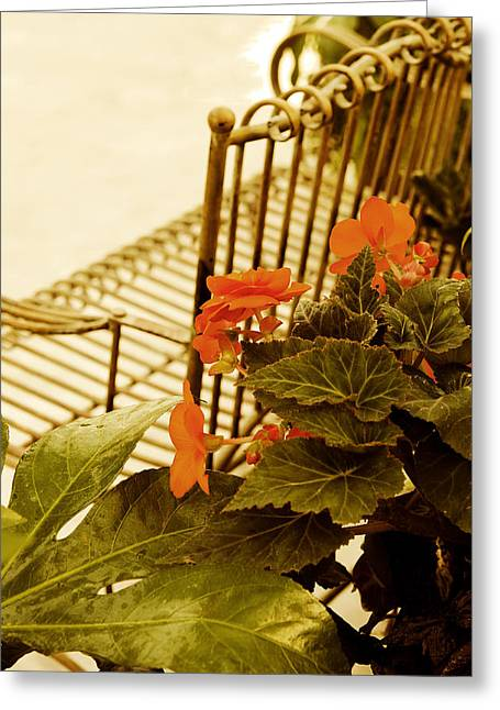 The Garden Bench Greeting Card by MaryJane Armstrong
